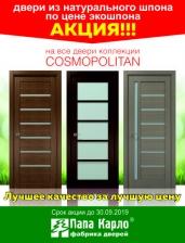 A door of natural veneer